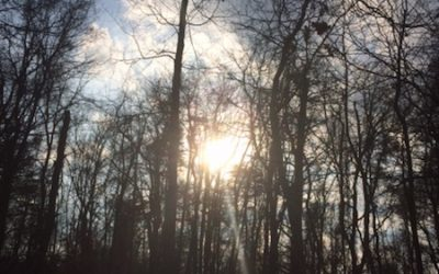 The Gift of Story: A Retreat for Advent and the Winter Solstice