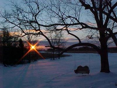 Homing in Winter